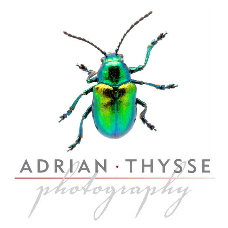 Adrian Thysee photography logo