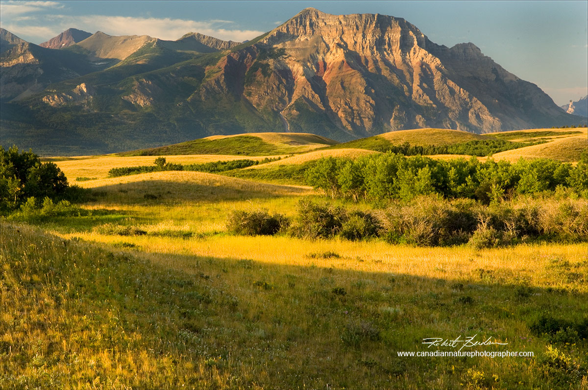 Vimy Peak Waterton National park with grasslands in the foreground - next to the highway Robert Berdan ©