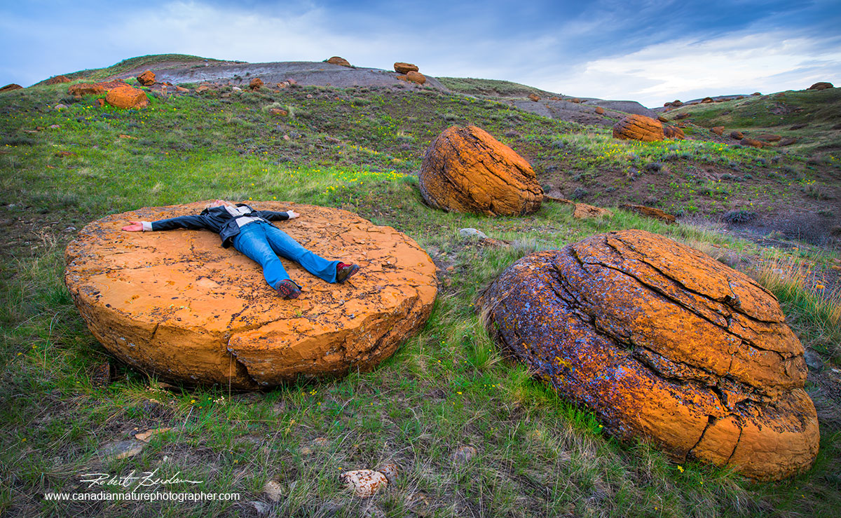 Red Rock Coulee showing the large concretions Robert Berdan ©