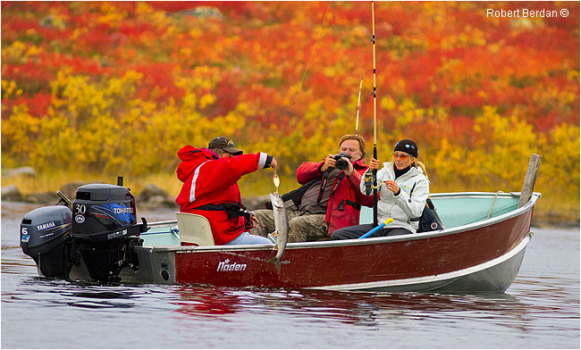 Catching a lake trout on Point Lake by Robert Berdan ©