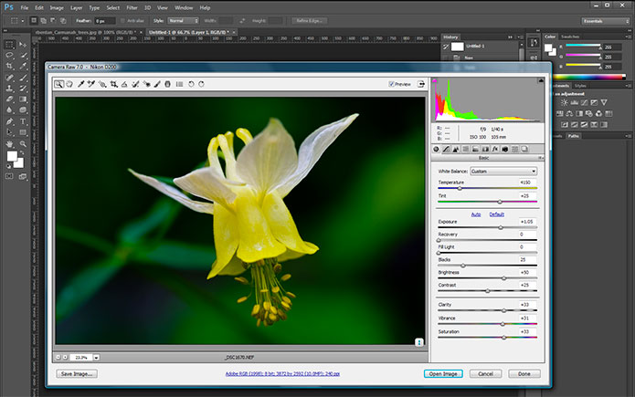 Camera RAW interface still has a lighter color then the new CS6 interface
