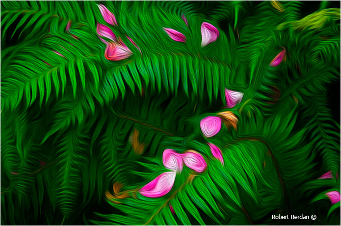 Ferns simulated oil painting in Adobe Photoshop CS6 by Robert Berdan