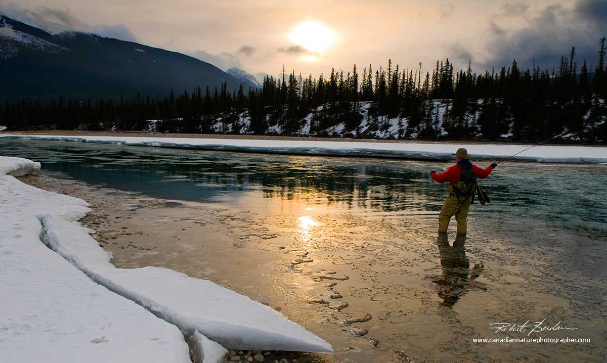 Fly fishing in winter on the Athabasca river by Robert Berdan ©