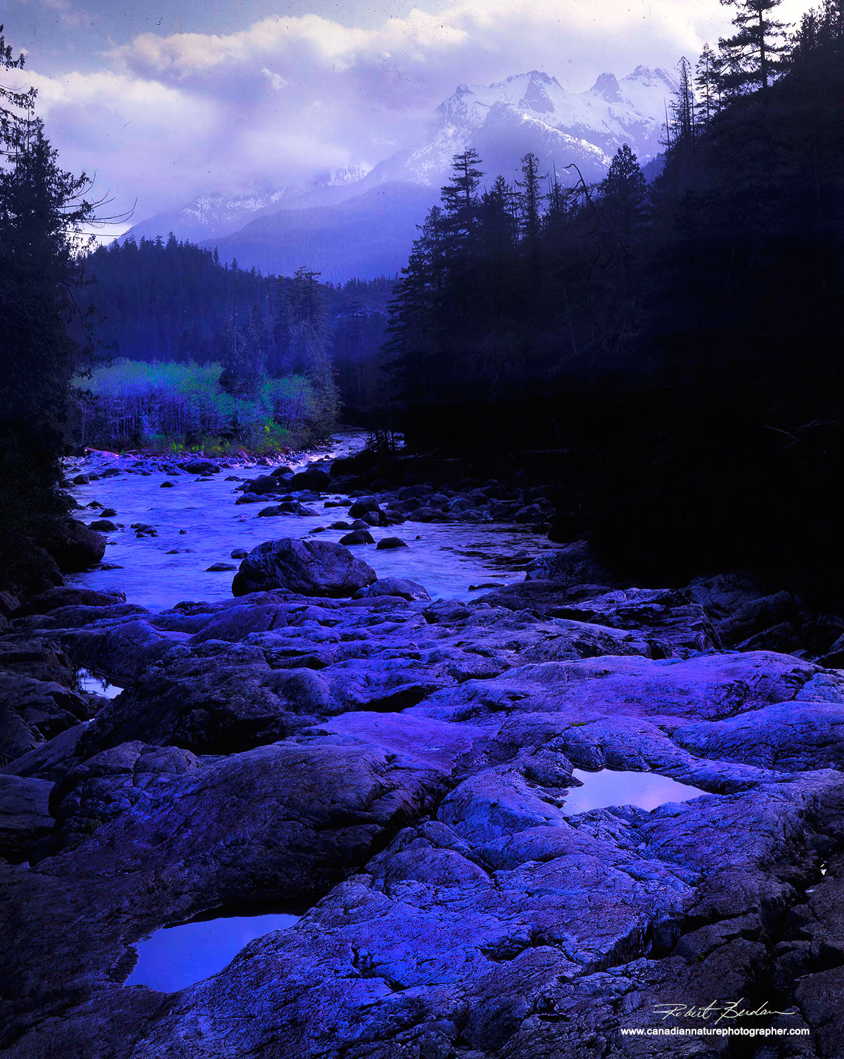 Kennedy river valley, Vancouver Island.  by Robert Berdan ©