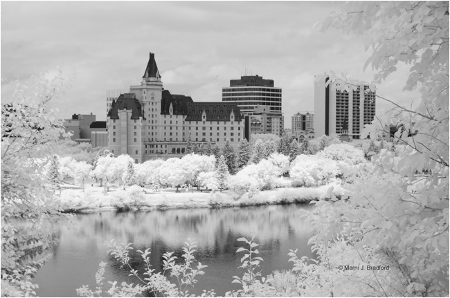 The Bessborough Hotel in Saskatoon, SK as seen from the east riverbank by Marni J. Bradford ©