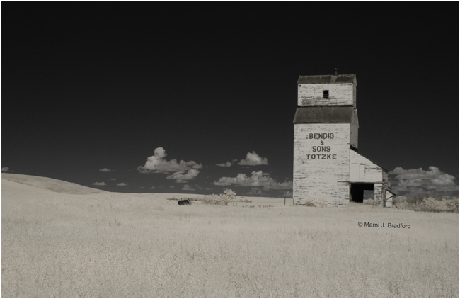 An abandoned grain elevator in rural Saskatchewan by Marnie J. Bradford ©