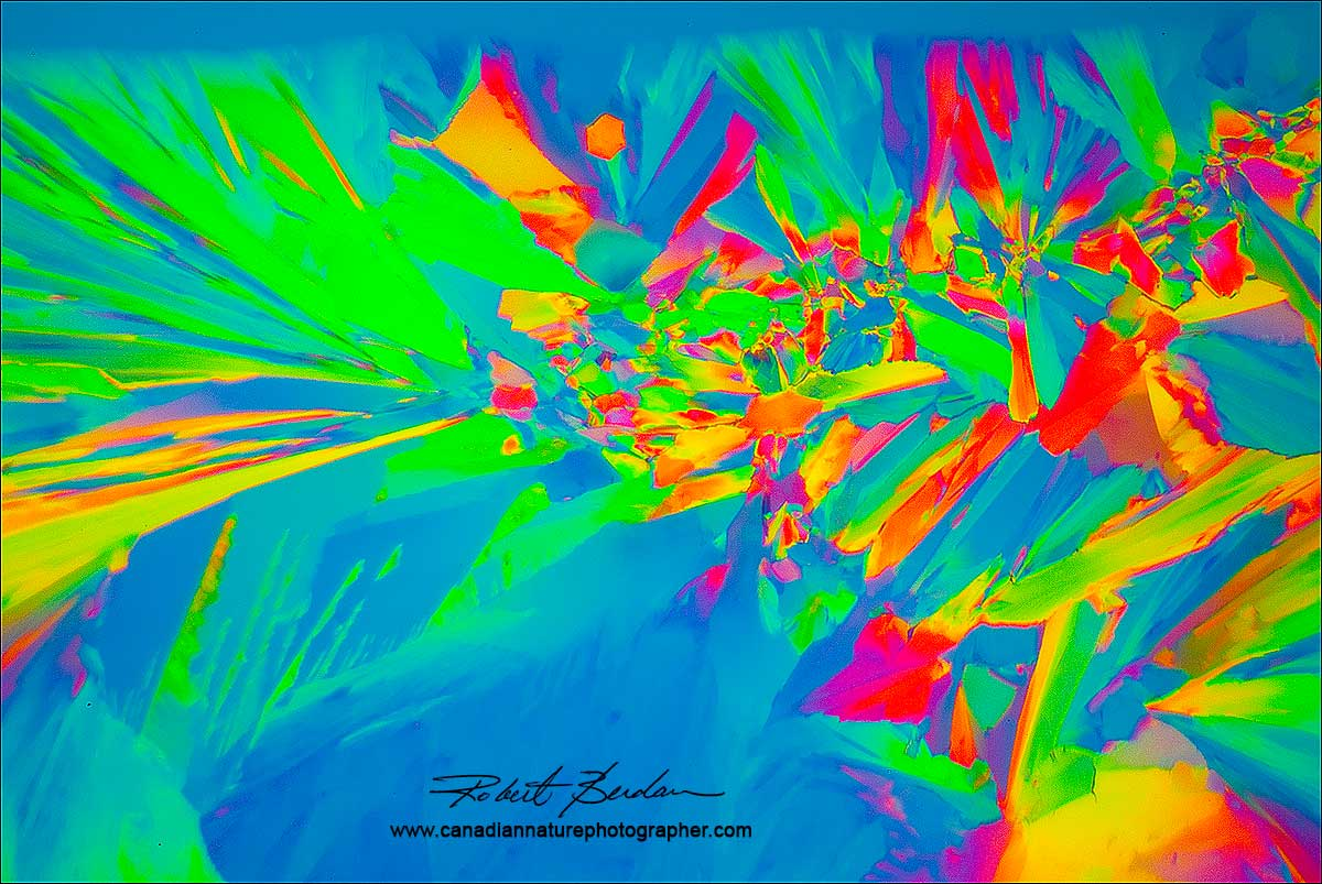 Citric acid crystals in Polarized light microscopy by Robert Berdan ©