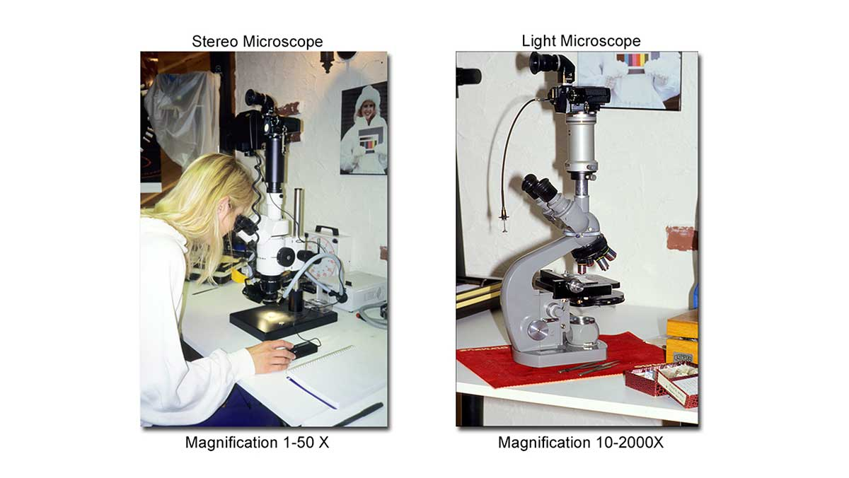 stereo and light microscopes by Robert Berdan