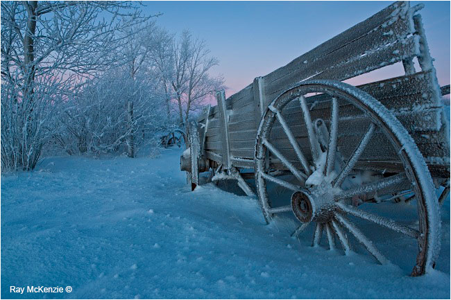 Wagon in winter by Ray Mckenzie ©