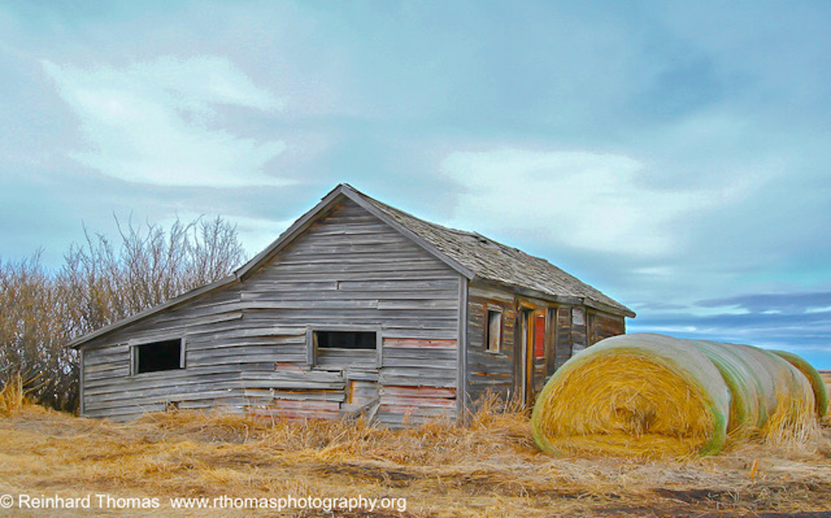 Old Alberta Barn by Reinhard Thomas ©