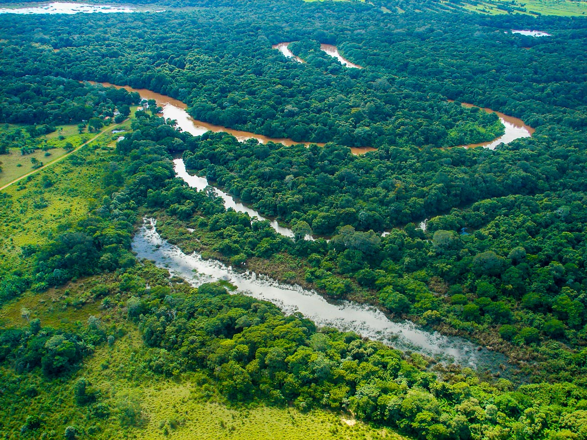 View out of small plane over the Pantanal by Reinhard Thomas ©