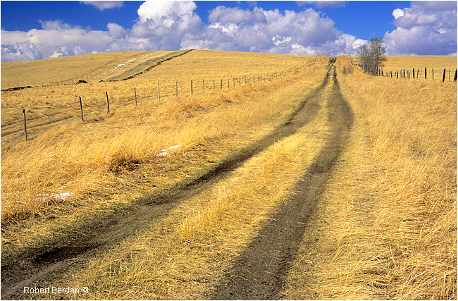Less traveled road south of Calgary by Robert Berdan ©