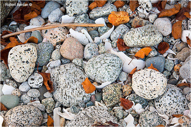 Stones and shells part of a miden by Robert Berdan ©