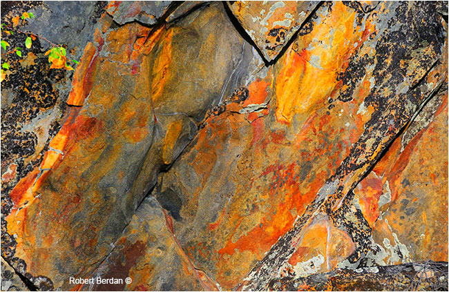 Rock face by Robert Berdan ©