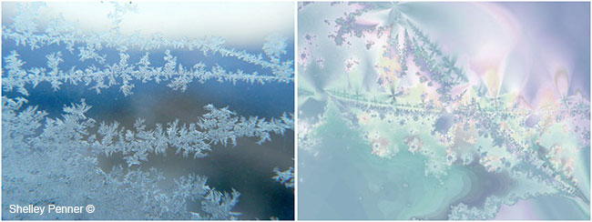 Frost on window and Ultra Fractal #8 by Shelly Penner ©