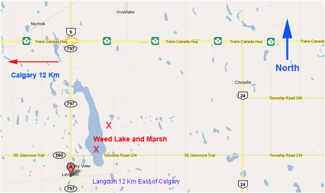 Map to Langdon and Weed Lake, AB