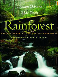 Rainfores - book cover