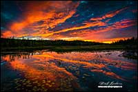 unset over lake in the Boreal forest near Yellowknife by Robert Berdan