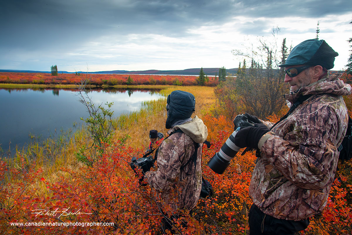 Patrick Pevey and Carol Grenier scan and photograph a small tundra pond by Robert Berdan ©