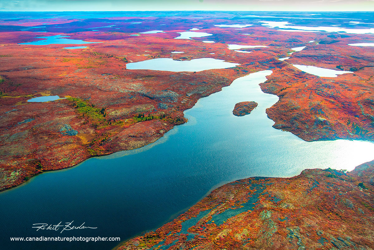 View of the tundra from the window of our Twin Otter shows thousands of small lakes by Robert Berdan ©