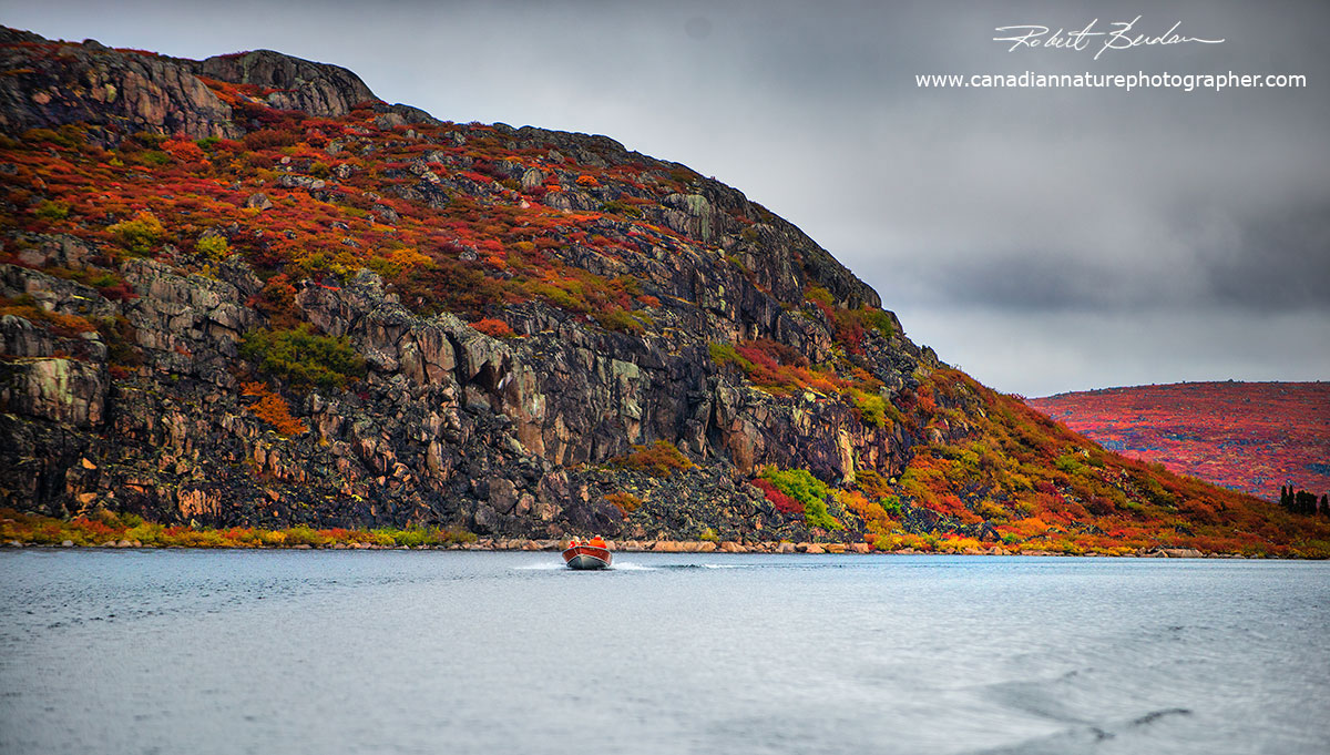 Across the Bay from Point Lake lodge are high cliffs that surround parts of the lake by Robert Berdan ©