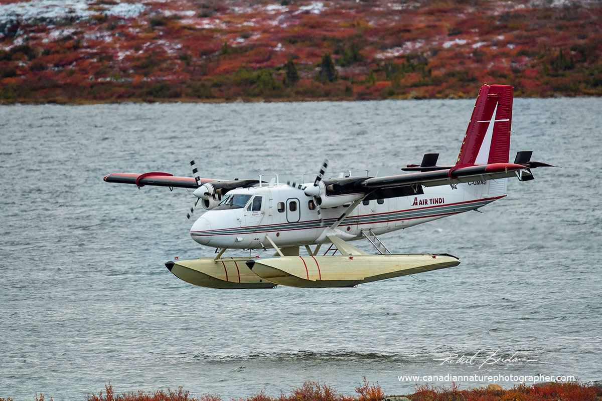 Twin Otter about to land on Point Lake by Robert Berdan ©