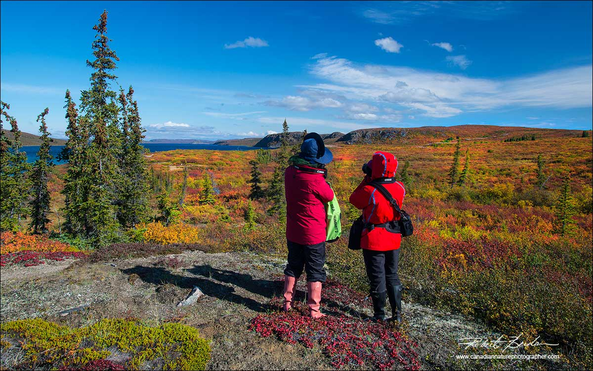 Vksitors look out over the tundra at Caribou Bay North West Terrirotires by Robert Berdan