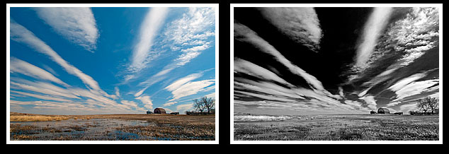Prairies in colour and black and white by Robert Berdan ©