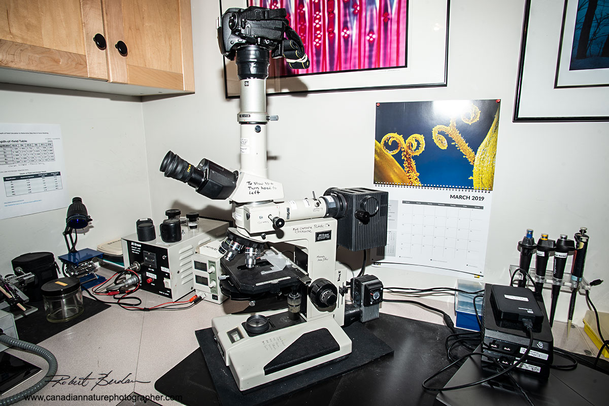 Nikon Optiphot microscope which offers phase contrast, fluorescence and polarizing ability Robert Berdan ©