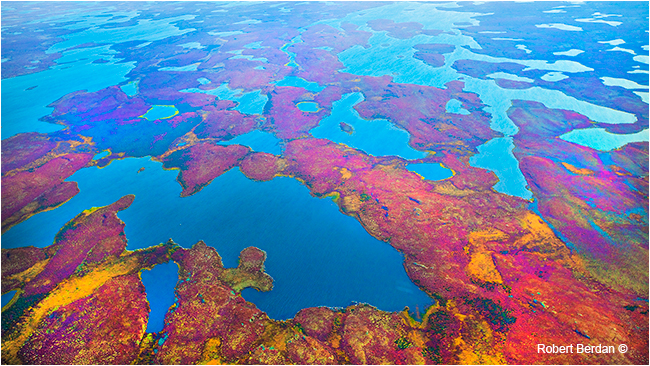 Tundra from the air in Autumn  by Robert Berdan