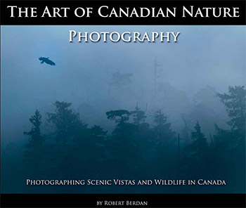 The Art of Canadian Nature Photography by Robert Berdan ©