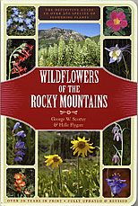 Wildflowers of the Rockies Guide Book by Halle Flygare