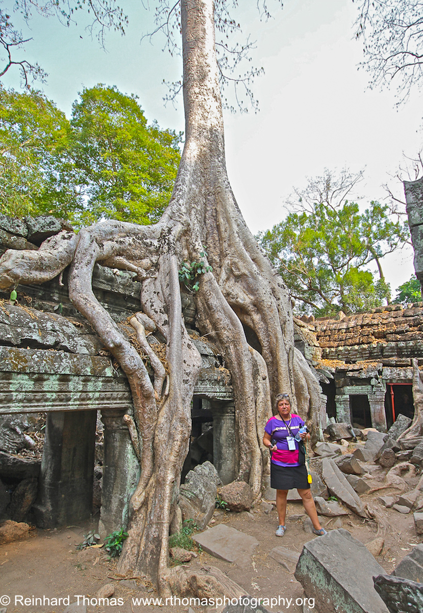 Ta Prohm Temple by  Reinhard Thomas ©