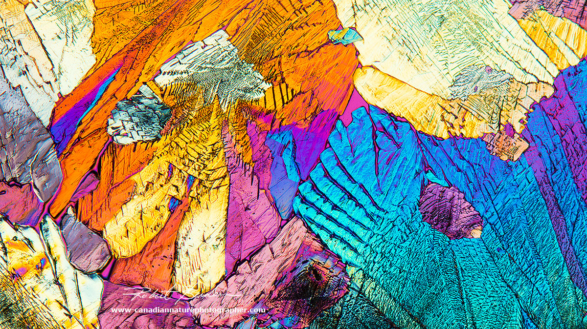 Mineral section by DIC microscopy 200X Robert Berdan ©