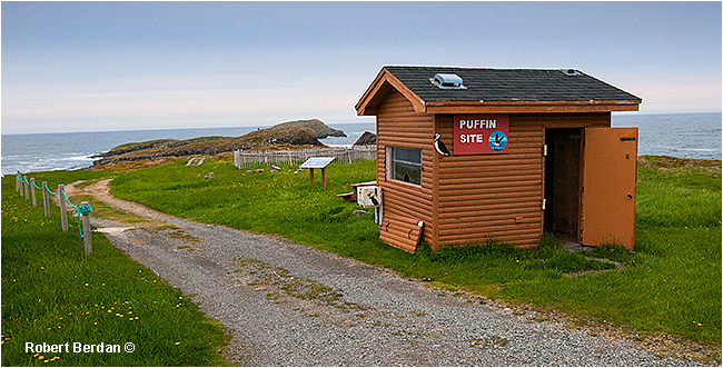 Cabin and entrance to Bird Island Elliston, Newfoundland by Robert Berdan ©