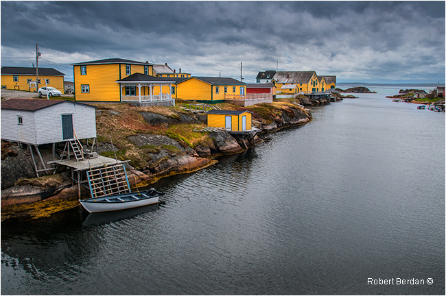 Newton Newfoundland by Robert Berdan ©