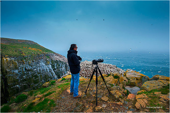 Photographer at Cape St. Mary's by Robert Berdan ©