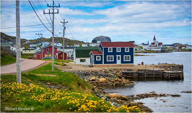 Fogo view of Little Harbour by Robert Berdan ©