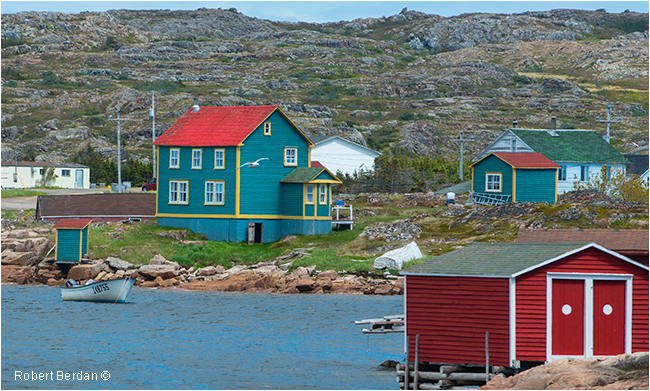 Joe Batt's arm houses and outhouse by Robert Berdan ©