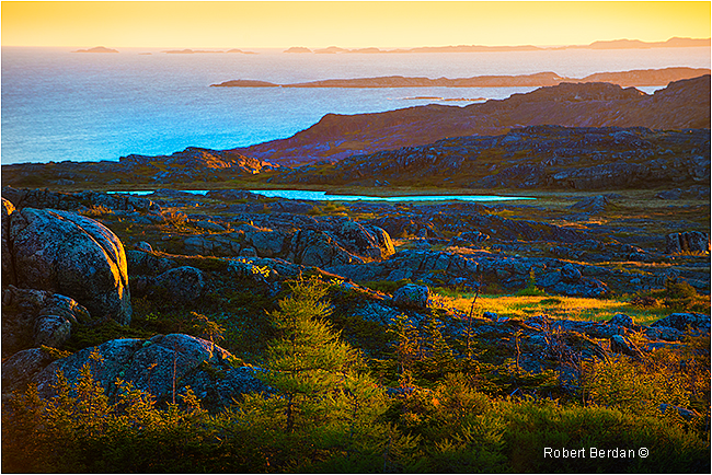 Fogo island tundra at sunrise by Robert Berdan ©