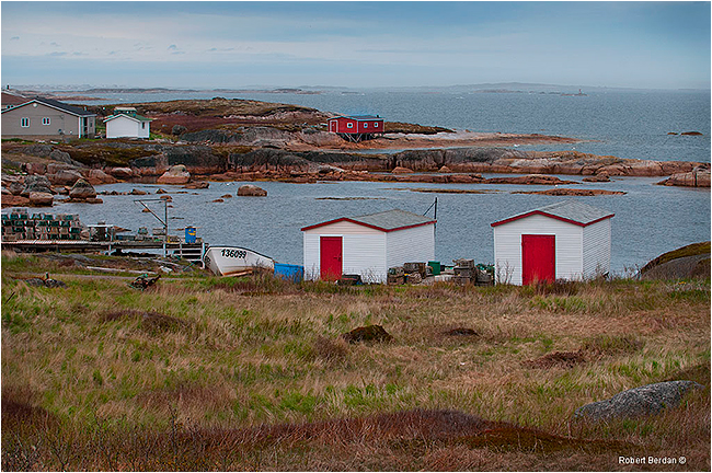 Newtown Newfoundland by Robert Berdan ©