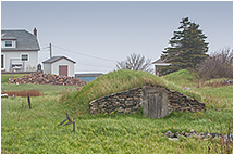 Root cellar Elliston by Robert Berdan ©