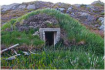 Root cellar by Robert Berdan ©