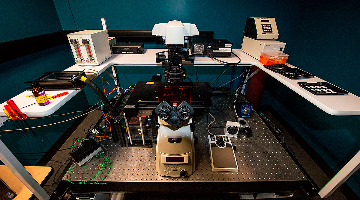 Nikon microscope set on an antivibration table Live Celll Imaging Resource University of Calgary by Robert Berdan