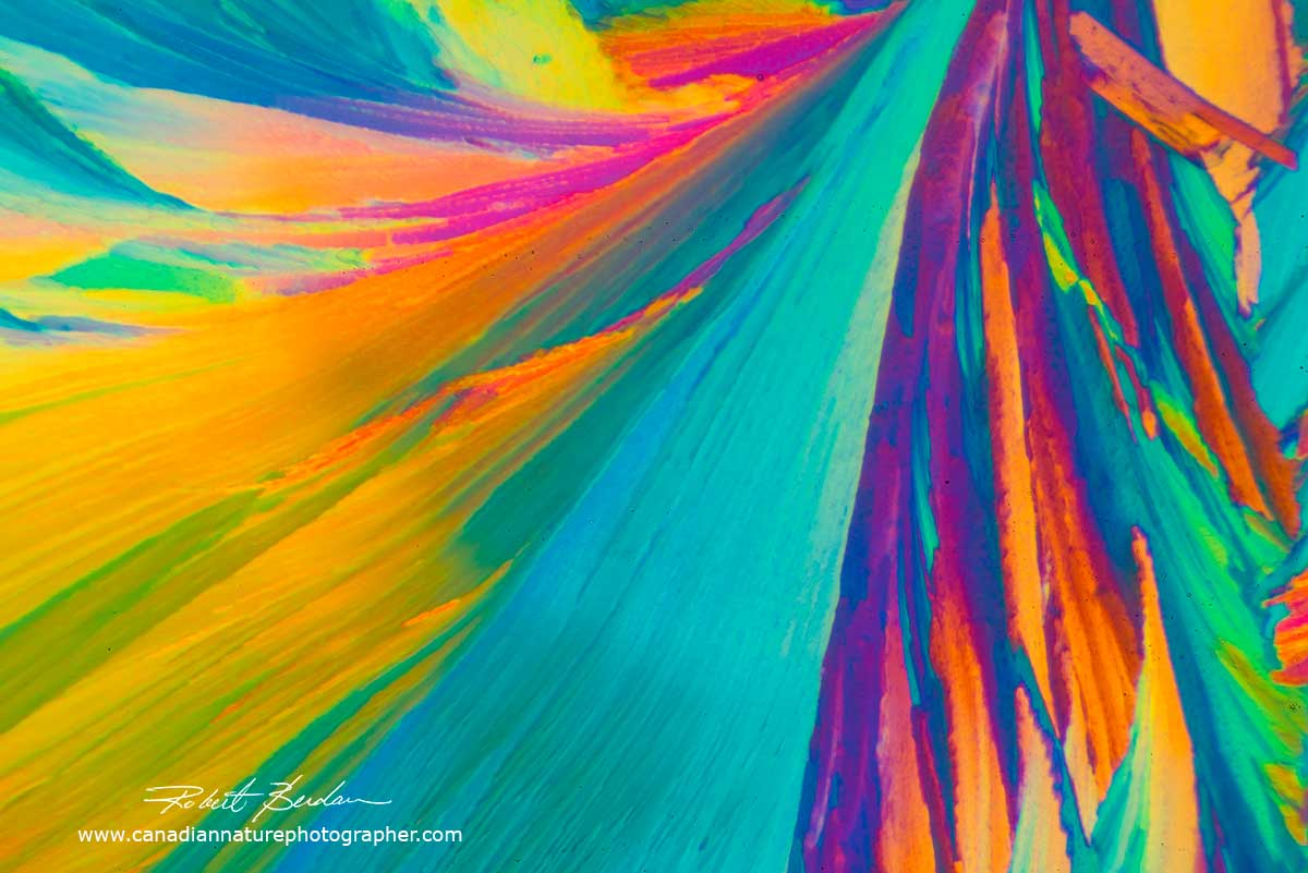 Citric acid crystals by Polarized light microscopy - Abstract by Robert Berdan ©