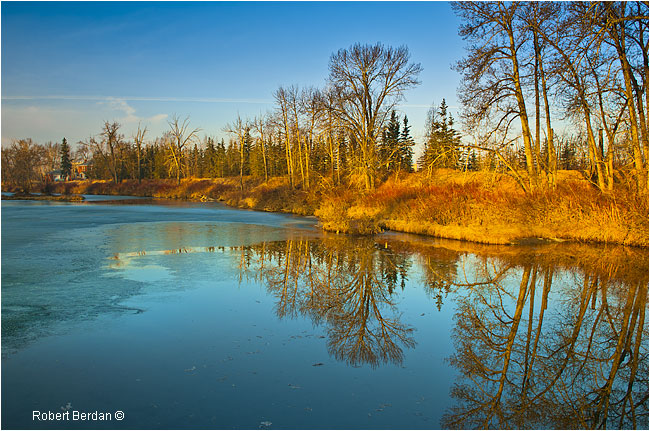 Inglewood bird Sanctuary by Robert Berdan ©