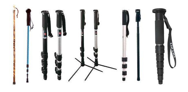 Variety of monopods