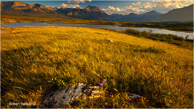 Maskinonge Lake Waterton National Park by Robert Berdan