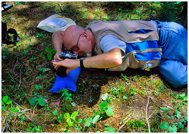 Bean bag used on the ground for support to photograph wildflowers by Robert Berdan ©