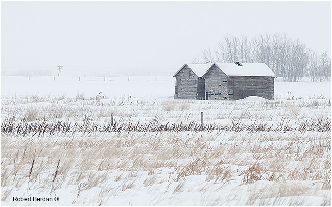 Old storage sheds in winter field by Robert Berdan ©